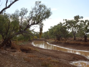 Waltzing Matilda billabong